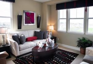 ORGANIZNG IN LIVING ROOM